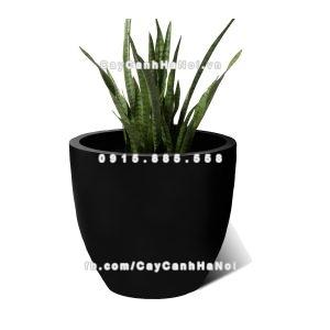 Chậu composite Havico Casa tròn trồng cây| HVC-00007