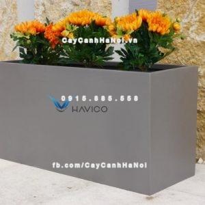 Chậu nhựa composite Havico Hely sang trọng| CB-334Chậu nhựa composite Havico Hely sang trọng| CB-334