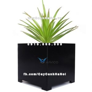 Chậu nhựa composite Havico Cube vuông| HVC-00013