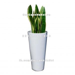 Chậu nhựa trồng cây composite Havico| HVC-00012